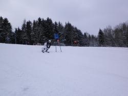 Slalom201001312_20